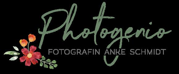 logo_anke_schmidt